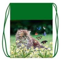 Мешок для обуви Оникс - МО-26-2 - Котёнок с бабочками (55034)